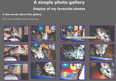 print screen of photo gallery of Chinchillas